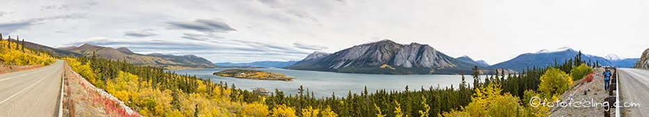 Bove Island in the Tagish Lake, Windy Arm, Klondike Highway, Yukon Territory, Kanada